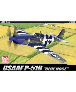 USAAF P-51B BLUE NOSE KIT 1:48